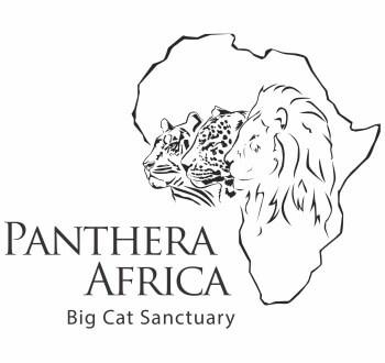 Panthera Africa