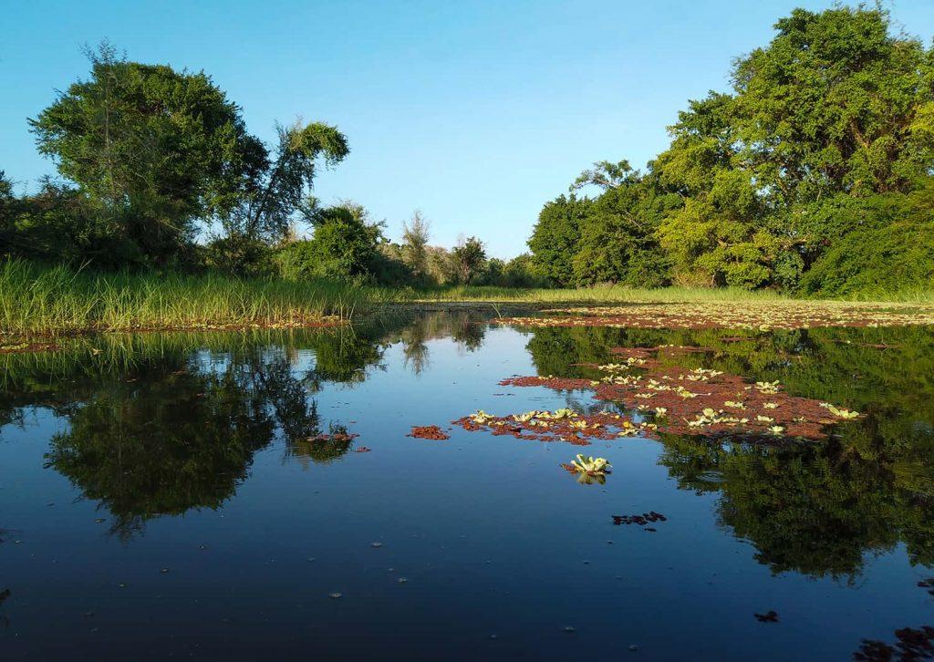 Bootsfahrt auf dem Limpopo